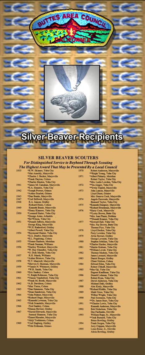 silver beaver5